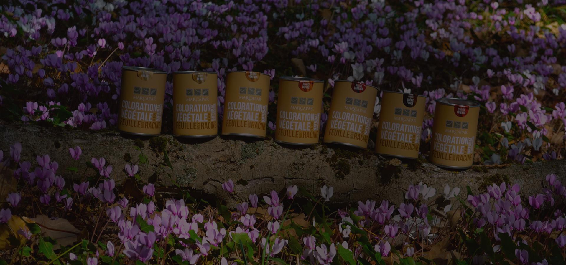 coloration-vegatale-garance-camomille-orleans-marcapar