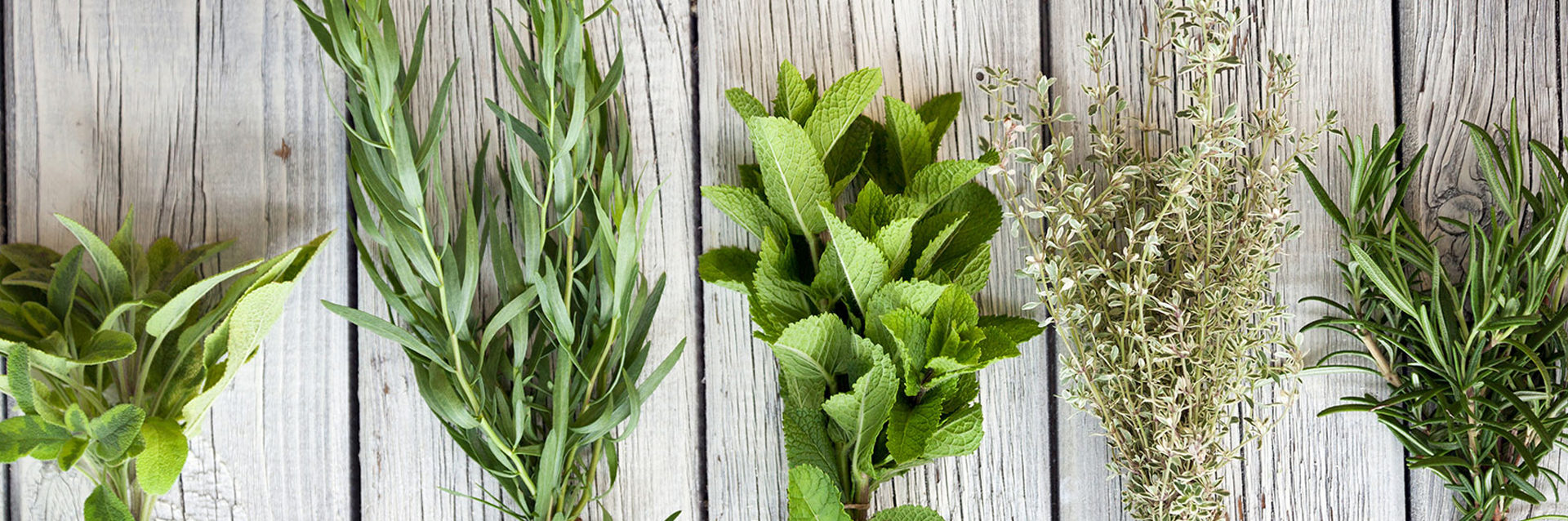 slide-soins-aromatiques-garance-orleans
