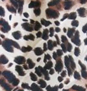 misu_leopard